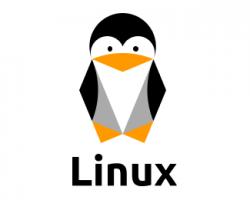چگونه تعداد فایل و پوشه ها را در لینوکس بشماریم؟